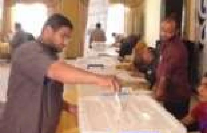 """المعهد المصري الديمقراطي: لم نرصد أي تأثير على الناخبين في انتخابات """"الدستور"""""""