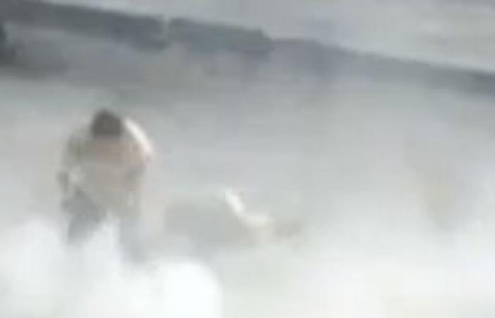 """بالفيديو.. قوات بشار تستخدم فتاة """"طعم"""" لاصطياد مقاتلى الجيش الحر"""