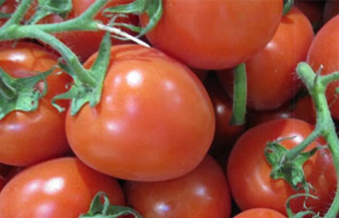 الطماطم تقلل الإصابة بمرض السرطان وتقلل الإصابة بتجلط الدم