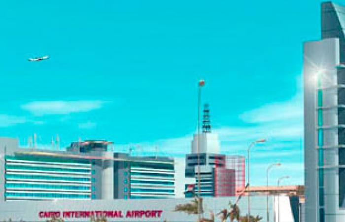 """سلطات المطار تحبط تهريب كمية كبيرة من """"فرس البحر"""" مع 4 مصريين"""