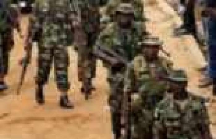 نيجيريا تعتقل المئات وتصادر عشرات السفن المتورطة في سرقة البترول الخام