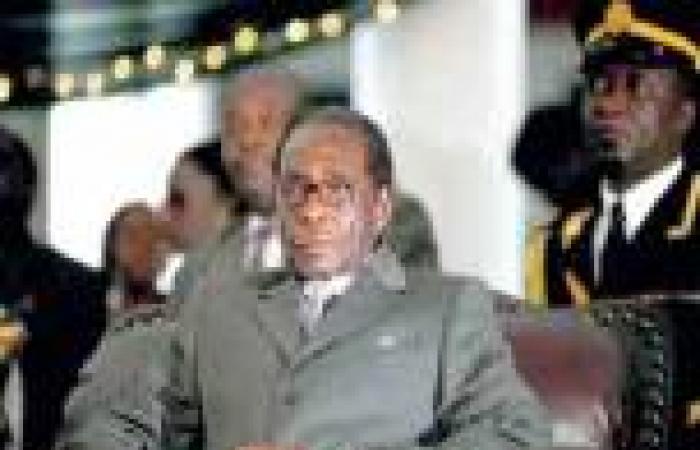 مصدر: 75% من أصوات ناخبي زيمبابوي في الانتخابات الرئاسية ذهبت لـ«موجابي»