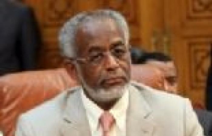 وزير الخارجية السوداني: ما يجري في مصر هو شأن داخلي