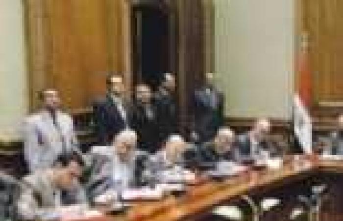 دستوريون: لجنة الخبراء حذفت «مواد الشياطين» من الدستور