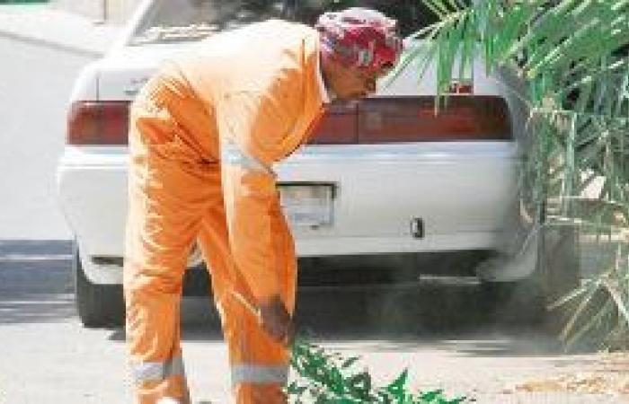 عمال النظافة يعملون تحت أشعة الشمس و«العمل» تناشد الشركات تطبيق النظام