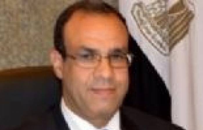 جهود مكثفة لسفارات مصر بأوكرانيا واليونان وكوريا وتوجو لشرح حقيقة الوضع الراهن