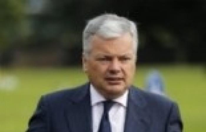 وزير الخارجية البلجيكي: عودة الحياة الطبيعية إلى مصر سيستغرق وقتا طويلا