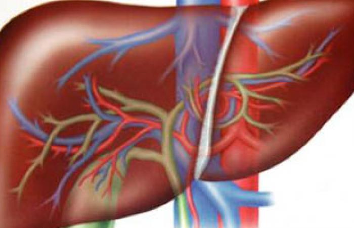 انعقاد مؤتمر الجمعية المصرية لأمراض الكبد والجهاز الهضمى