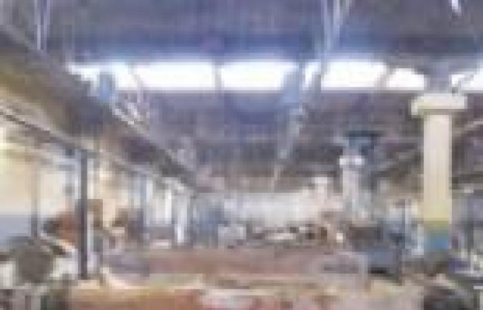 """عادل جزارين: """"القابضة للصناعات المعدنية"""" ترفض نقل """"النصر للسيارات"""" إلى """"الإنتاج الحربي"""""""