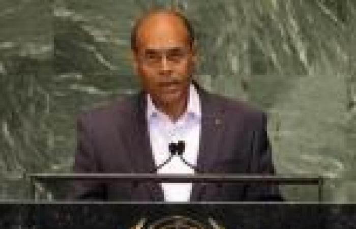 «الخارجية» ترد على طلب «المرزوقي» إطلاق سراح مرسي: يتحدى إرادة الشعب