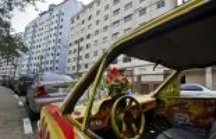 بالصور| فنانو البرازيل يحولون السيارات المهجورة لأعمال فنية