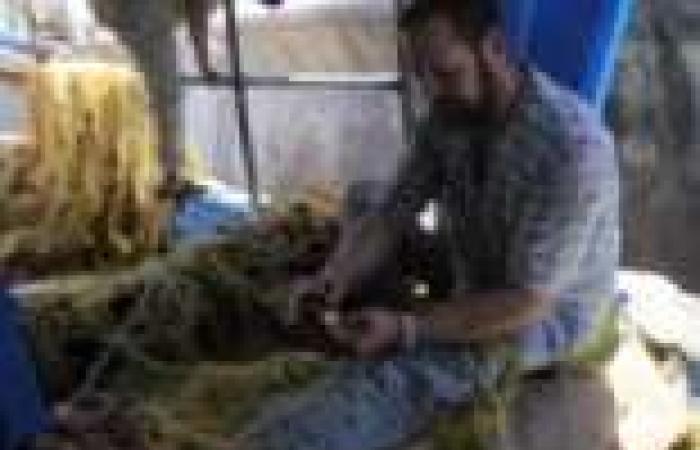 """متخصص بالشؤون الإفريقية: العمالة المصرية """"ورقة ضغط سياسية"""" في يد ليبيا"""
