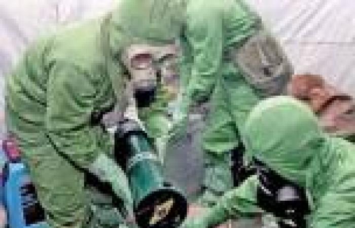 الأمم المتحدة: الأسلحة الكيماوية استخدمت عدة مرات في سوريا
