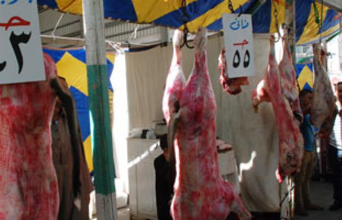 غدا أول يوم لتطبيق منع ذبح البتلو وتوقعات بزيادة فى أسعار اللحوم