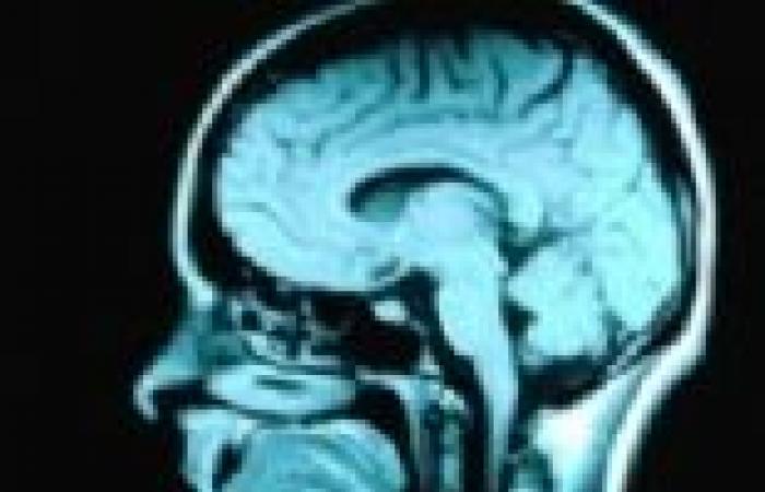 دراسة: القراءة تحسن وظائف المخ لعدة أيام