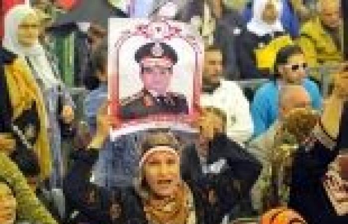 """""""تورتة"""" ثلاثة أمتار على شكل علم مصر لتأييد الدستور والسيسي بالدقهلية"""