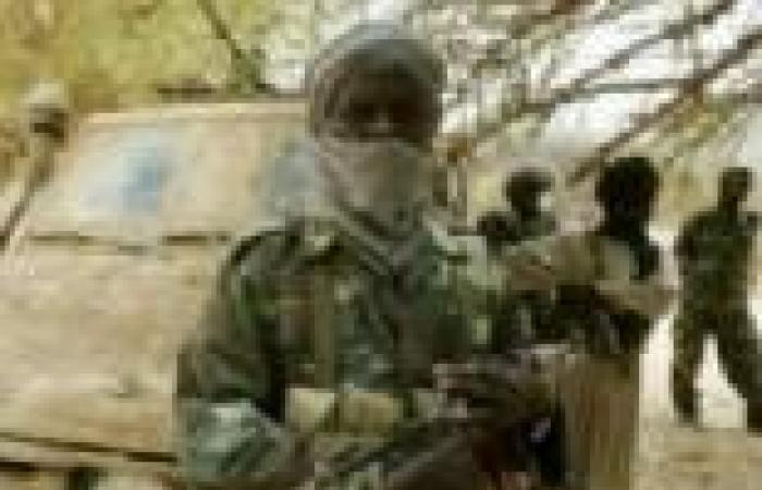 متمردون في السودان يقولون إنهم قتلوا عشرات الجنود في النيل الأزرق