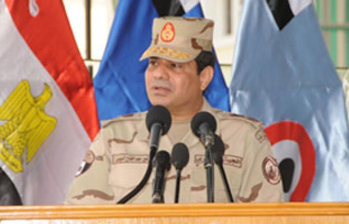 نريد السيسى رئيسًا: نقف خلف المشير بكل قوة حتى يصبح رئيسا لمصر