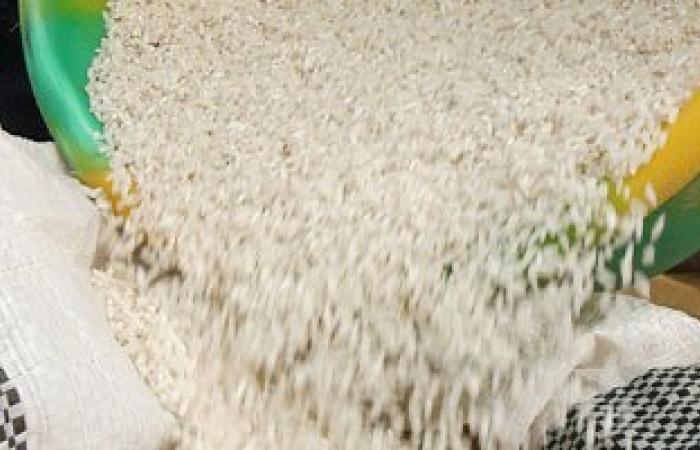 أكاديمية البحث العلمى توقع 3 اتفاقيات للنهوض بإنتاجية الأرز والقطن