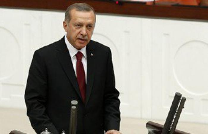 مفكر تركى يصف توجهات حكومة أردوغان بالجنون
