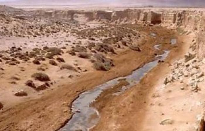مشروع قرار أمام مجلس الأمن يدعو لتكثيف المفاوضات حول الصحراء الغربية