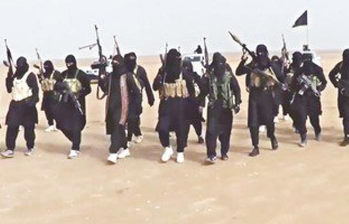 الطيران العراقى والدولى يقتل 5 من داعش فى الانبار
