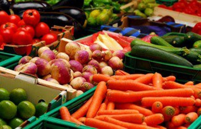 خبيرة تغذية تنصح بتناول الفاكهة والخضروات المدرة للبول والمغذية فى رمضان