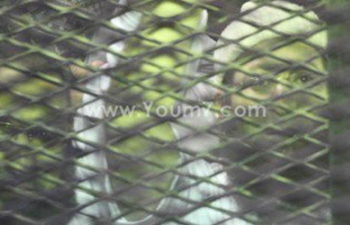 """مصدر: الأجهزة الأمنية تلقى القبض على عضو هارب بـ""""خلية الصورايخ"""""""