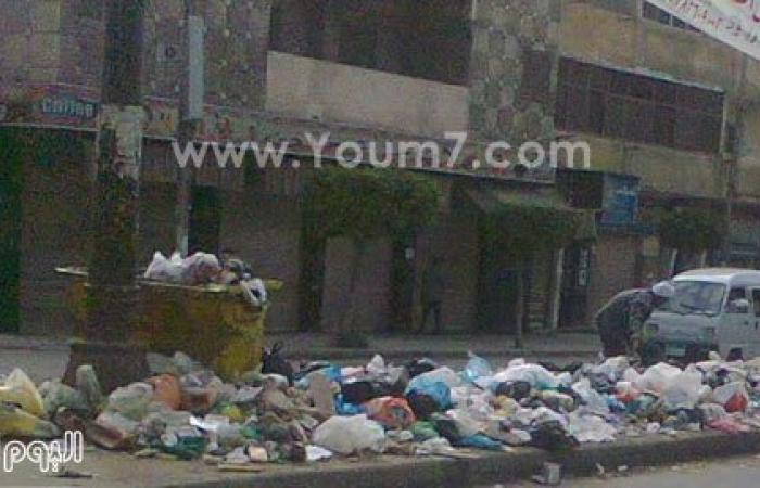 بالصور.. القمامة والكلاب الضالة والصرف الصحى تشوه البيطاش بالعجمى