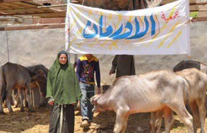 """""""جمعية الأورمان"""": 110 رؤوس ماشية مهداة من مؤسسة الرئاسة لمحافظة الغربية"""