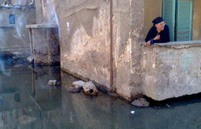 غدا.. ندوة حول مخلفات الذبح وآثارها على شبكات الصرف الصحى بالإسكندرية