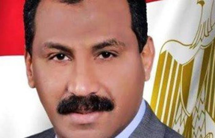 """فوز """"عصام سعد منسى"""" بمقعد الدائرة الثانية بالإسماعيلية"""