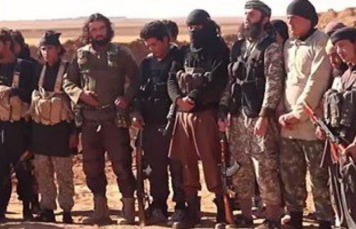 """مقتل 8 قياديين بتنظيم """"داعش"""" فى ضربات جوية بالعراق"""