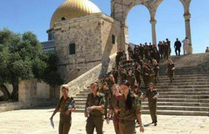 مستوطنون يقتحمون المسجد الأقصى تحت حراسة شرطة الاحتلال