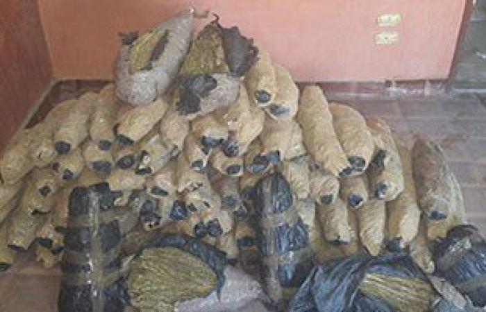 ضبط 1.5 طن بانجو فى مطاردة نارية للشرطة مع تاجر مخدرات بأسوان