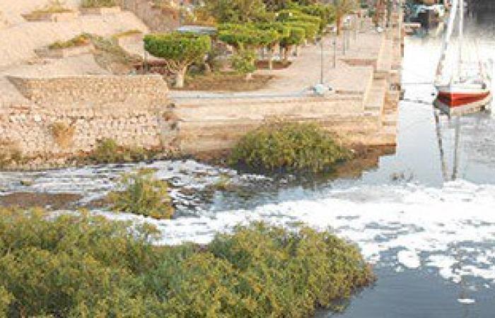 """أهالى أسوان لـ وزير البيئة:مشروع الحل العاجل لإنقاذ النيل من التلوث """"متعطل"""""""