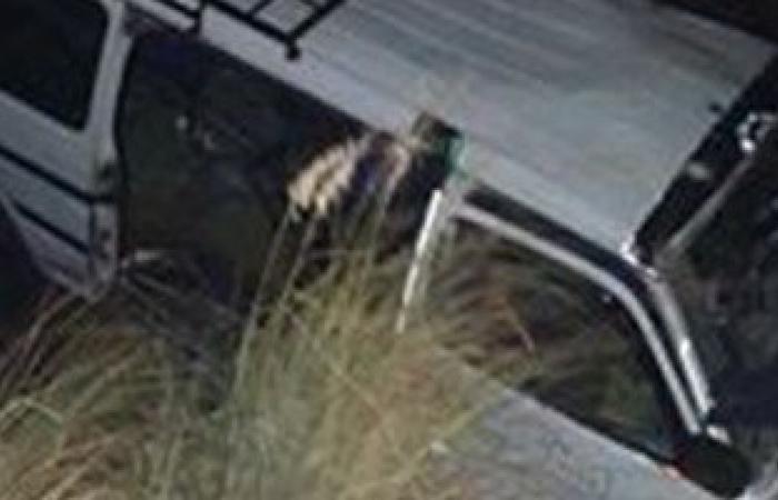 اصابة 14 شخص فى حادث انقلاب سيارة بالمنيا