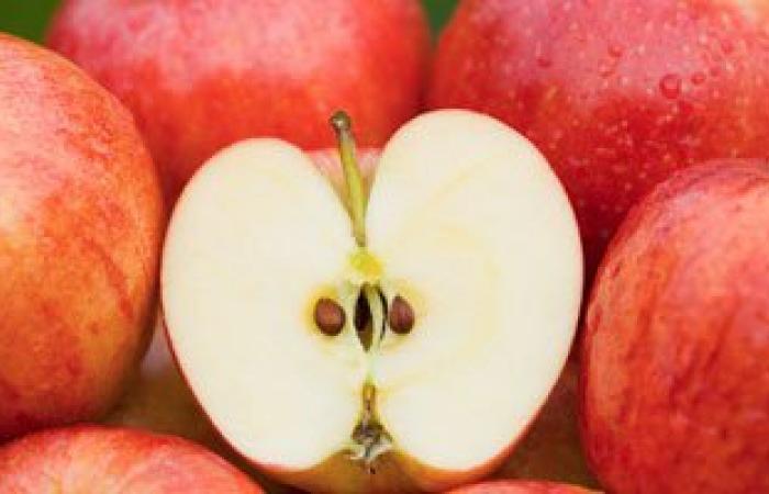 بشرى لمرضى السمنة..الفواكه والخضروات الغنية بالفلافونويد تمنع زيادة الوزن