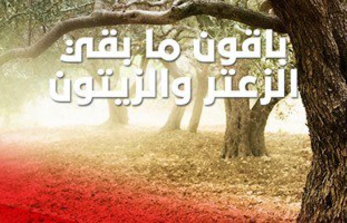 تحديد 30 يناير من كل عام يوم عالمى لفلسطينيو الخط الأخضر