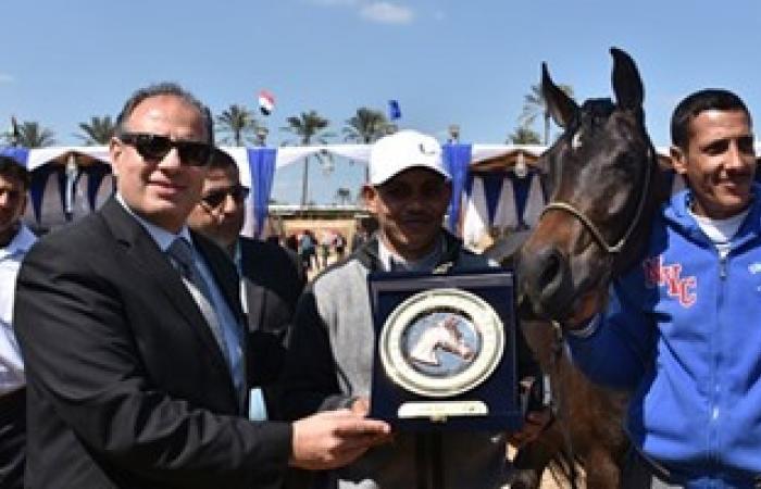 بالصور.. محافظ البحيرة يشهد فعاليات مهرجان الخيول العربية الأصيلة