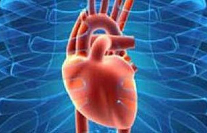 """دراسة أمريكية: العقل السليم فى """"القلب"""" السليم"""