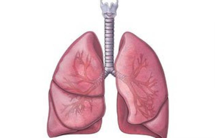 علاج التليف الرئوى أصبح متاحًا بالأدوية البيولوجية أو المضادة للتليف