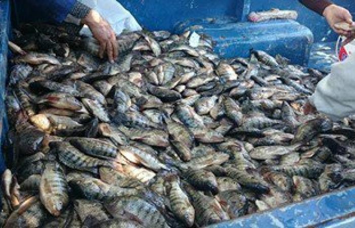 ضبط 5 طن أسماك صرف صحى فاسدة وسلاح خرطوش بحوزة صيادين بالوادى الجديد