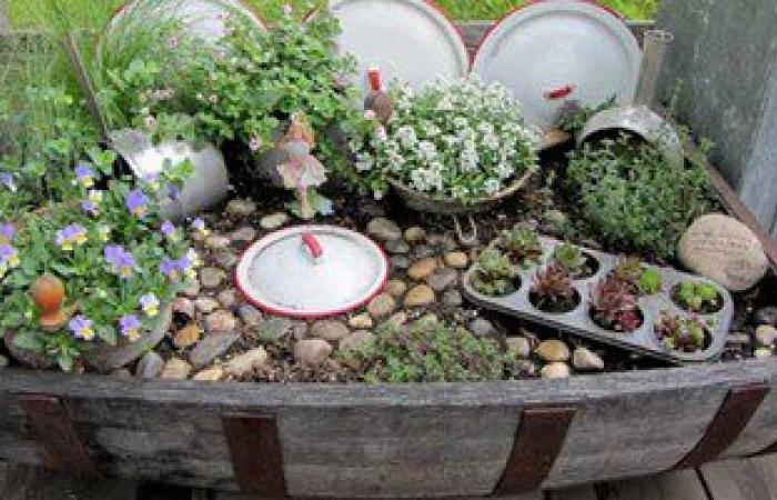 معهد بحوث البساتين بأسوان ينظم الأحد دورة تدريبية حول نباتات الزينة