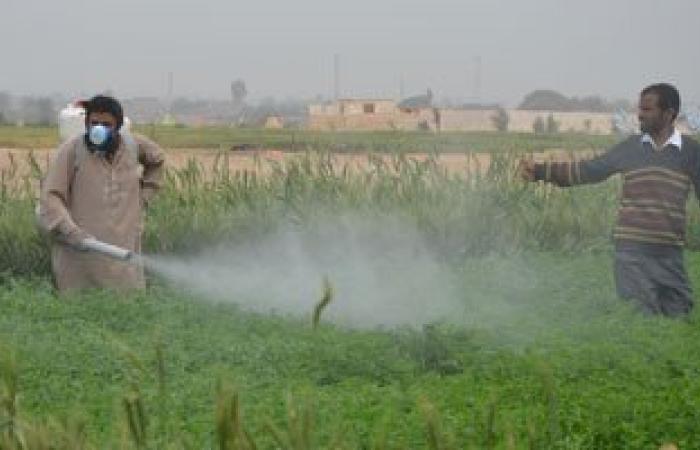أخصائية أورام: الأغذية المرشوشة بالمبيدات تقتل الإنسان ببطء وتسبب السرطان
