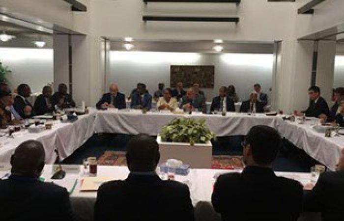 بالصور. مصر ترأس اجتماعاً تشاورياً بين مجلسى الأمن الدولي والسلم الإفريقي