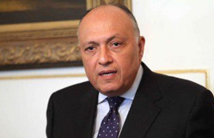 تحقيقات وزارة الخارجية تثبت براءة ممثل مصر من سب الدول الإفريقية