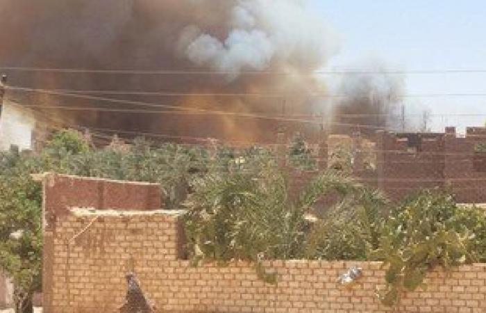حريق هائل يلتهم 8 أفدنة نخيل وعددا من المنازل بقرية الراشدة بالوادى الجديد