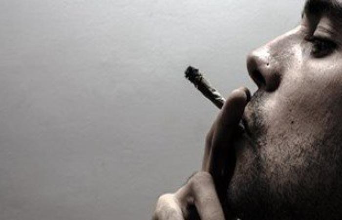 """ديلى ميل"""" تحذر: تدخين الحشيش بالتبغ يصعب الإقلاع عنه بمعدل 60%"""