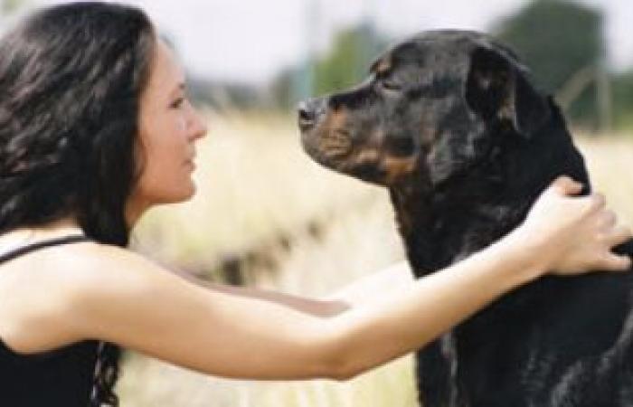 زوجة تطلب الخلع من زوجها بسبب حبها لـ3 كلاب